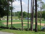 Baseball Field and Softball Field
