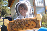 Working at the Lower School bee hive