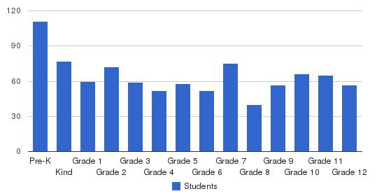 Madison-Ridgeland Academy Students by Grade