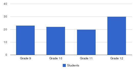 Ilan High School Students by Grade