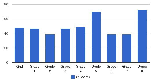 Chinese Christian Schools Students by Grade