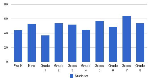 St Patrick Elementary School Students by Grade