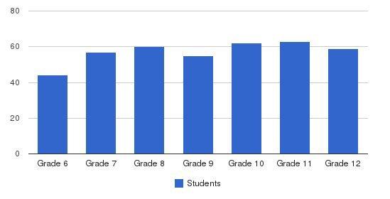 Salem Academy Students by Grade