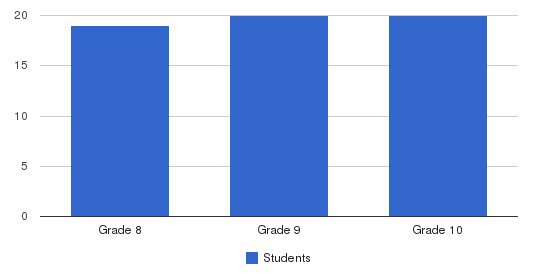 St. Patrick Academy Students by Grade