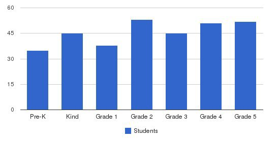 The Bright School Students by Grade