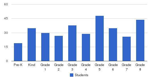 St Bernard Academy Students by Grade