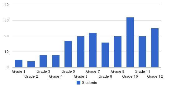 Dallas Academy Students by Grade