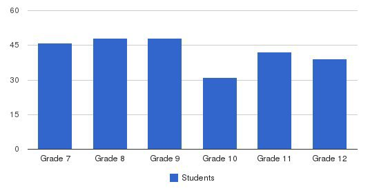 Hampton Christian High School Students by Grade
