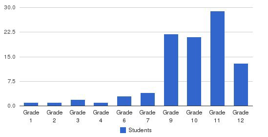 Hillside Academy Students by Grade