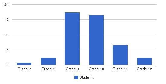 Aviva High School Students by Grade