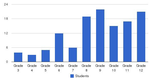 Center Of Life Academy Students by Grade