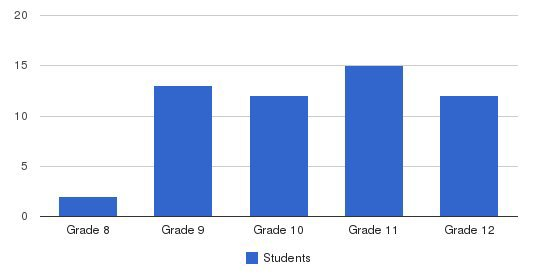 Community High School Students by Grade