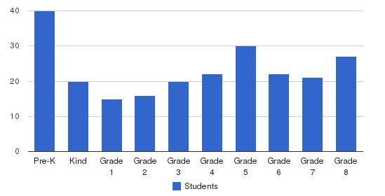 St Patrick S School Students by Grade