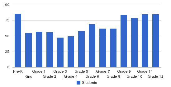 Athens Academy Students by Grade