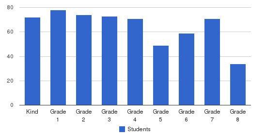 Davis Academy Students by Grade