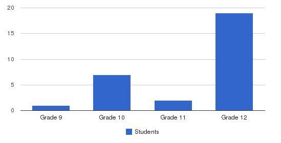 The Bridge High School Students by Grade
