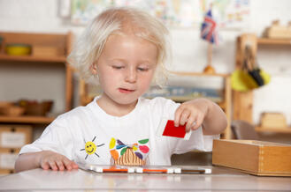 5 Facts About Montessori Schools