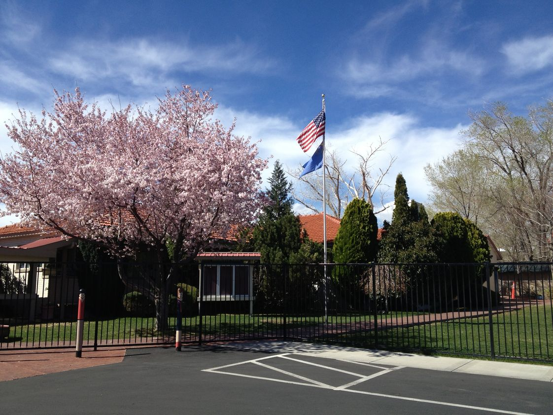 Brookfield School Photo - Spring blooms for students at Brookfield School. Reno - NV
