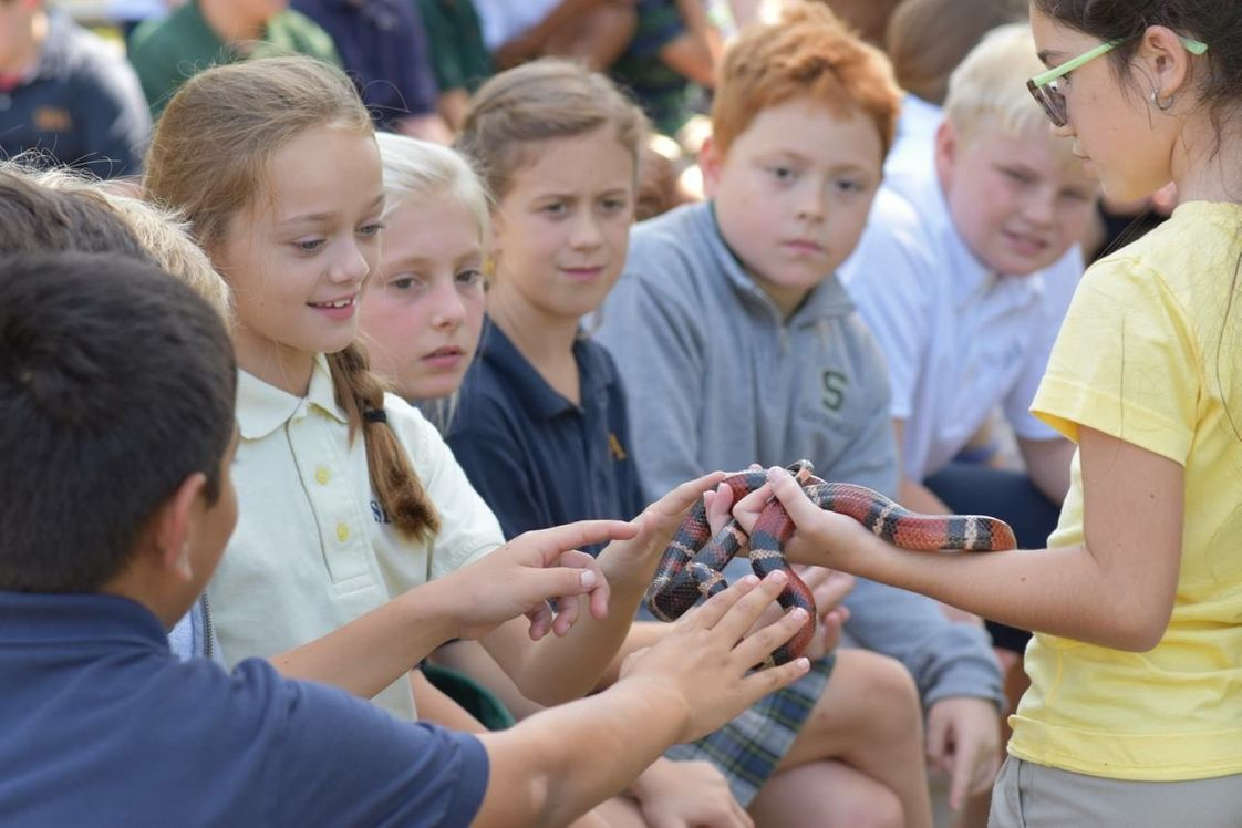 Silverdale Baptist Academy Photo #1 - Elementary students learning about snakes in our Outdoor Ed Initiative.