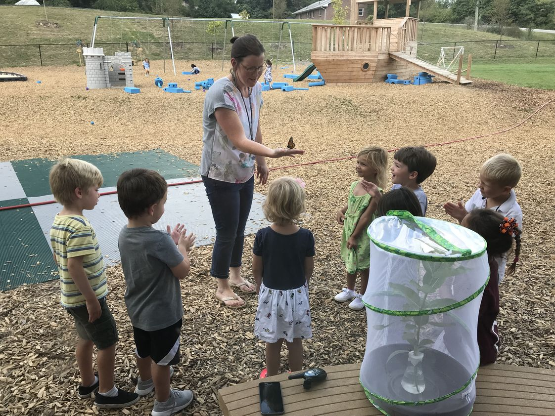 St. John Neumann Academy Photo - Preschool Students learn about the life cycle of Monarch Butterflies