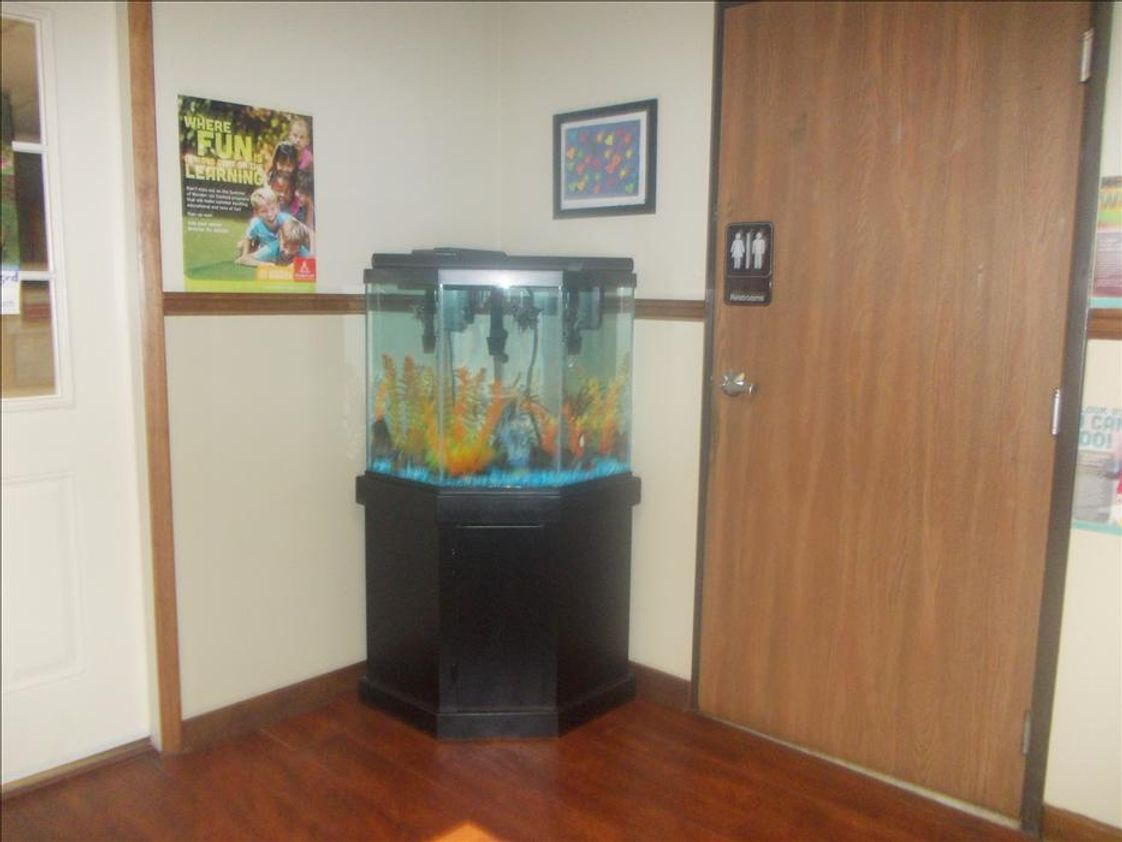 Concourse Parkway KinderCare Photo #1 - Our Fish Aquarium where Lewis lives!!