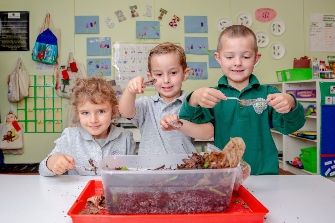 Aspen Academy Photo - PreK students learning about science and nature with a classroom worm bin.