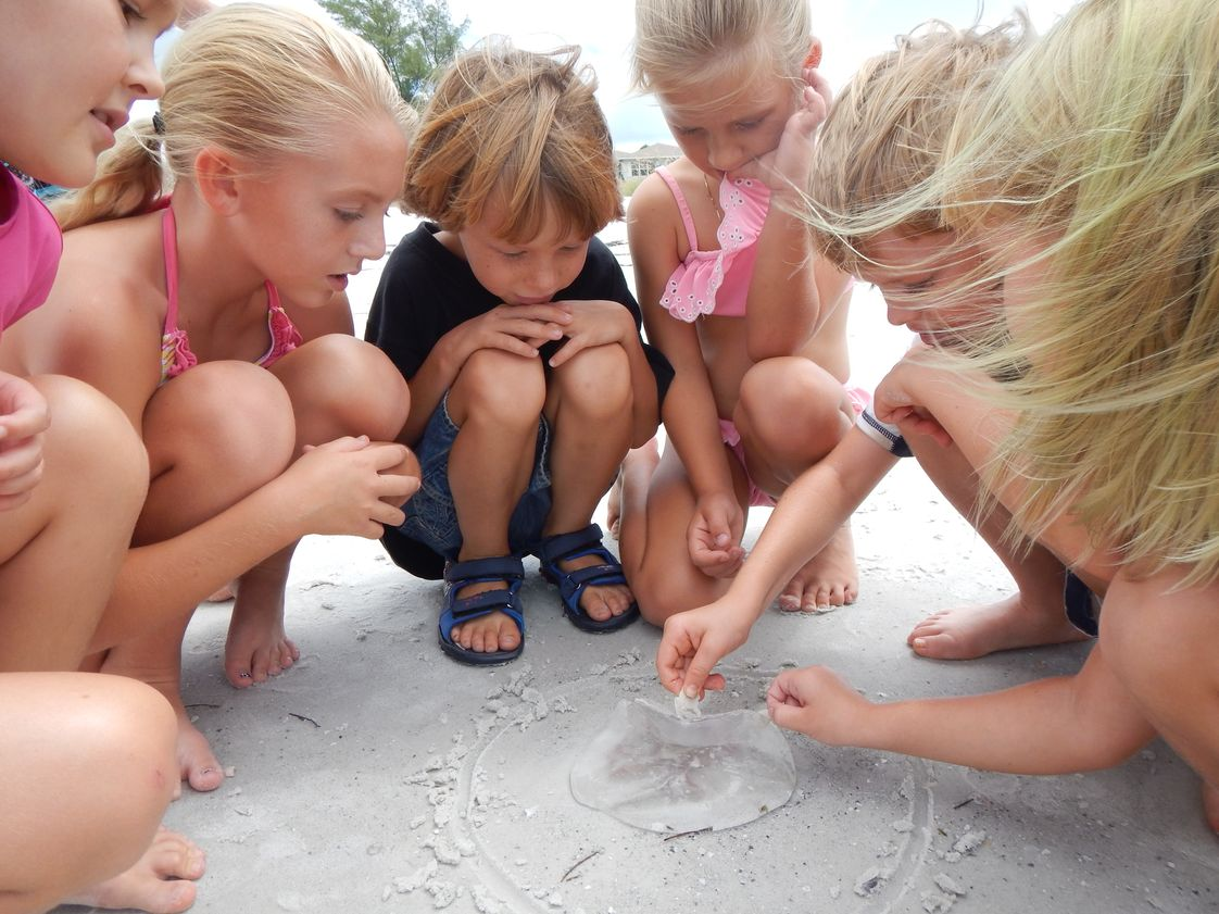 Montessori By The Sea Photo #1 - The beach is our outdoor classroom!