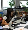 Rolling Hills Country Day School Photo - Hands on Lower School Science lab