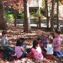 Pinewoods Montessori School Photo #2 - At Pinewoods, the outdoors is an extension of the classroom learning environment.