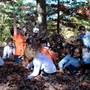 The New Classical Academy Photo #3 - TNCA students enjoying that timeless autumn activity: leaf pile fun.