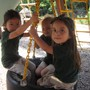 Honey Tree And Branches Academy Photo - Having fun swinging outside.