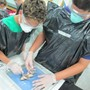 Grandview Preparatory School Photo #1 - Middle school students dissect frogs in Life Science.