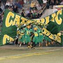 Pensacola Catholic High School Photo #4 - Crusader Football