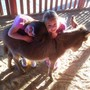 Safety Harbor Montessori Academy Photo #2 - Students hugging Churro the Burro.